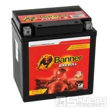 Baterie Banner YT30L-BS