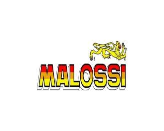 Malossi ®